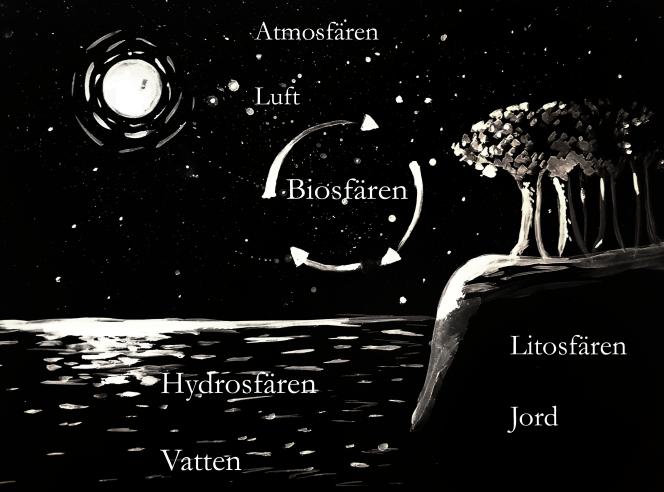 Biosfärerna2.png